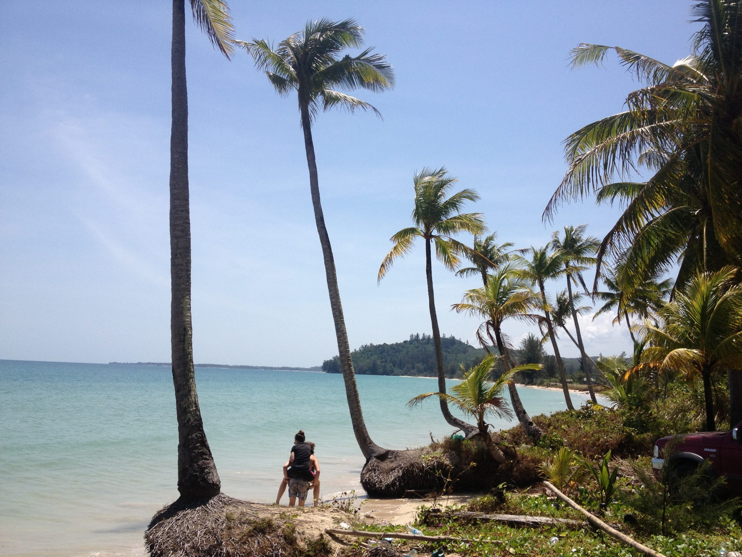 The beach paradise that awaits the weary traveller. Deep blue sea against golden sands and tall palm trees