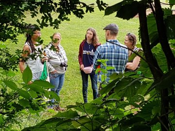 Through the trees peek at a group discovering what poisons and remedies can be found in the wild plants and trees