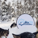 polaris outdoor sign in the snow with husky dogs and wolves around