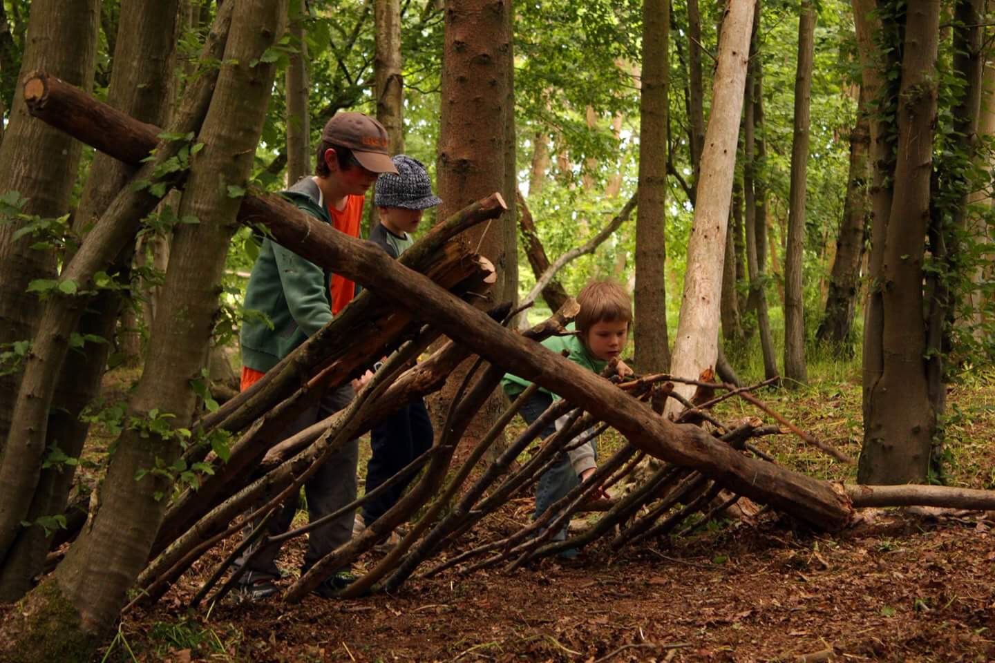 Young students and people making a lean to shelter in the woods